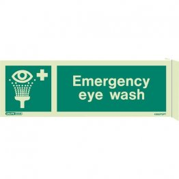 Wall Mount Emergency Eye Wash 4366FS