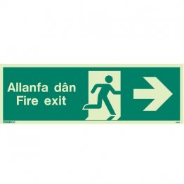 Allanfa Dan Right 480