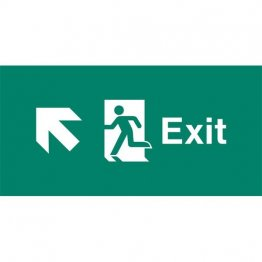 Emergency Light Legend Exit Ahead Pack of 10 EL444