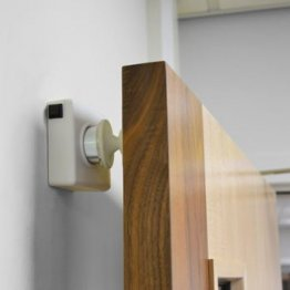 Doormouse Hardwired Acoustic Door Holder