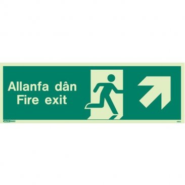 Allanfa Dan Up Right 485