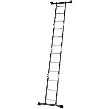 Professional Adjustable Ladder